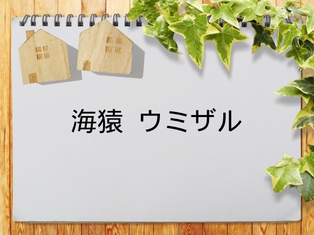 海猿 ドラマ 無料動画