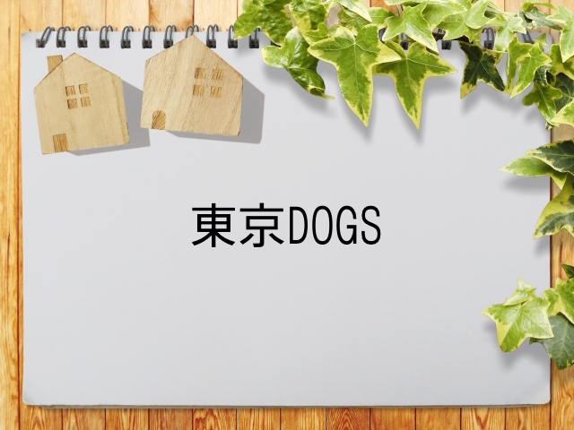 東京ドッグス 動画